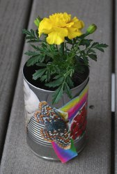 Can Flower Pot