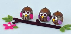 Itty Bitty Acorn Owls