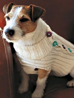 Cable Knit Greyhound Sweater Allfreeknitting Com