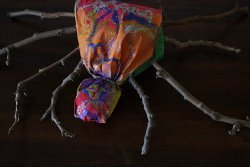 Bag Body Spiders