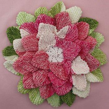 Flower Hotpad AllFreeKnitting.com