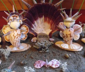 Seashell Fairies