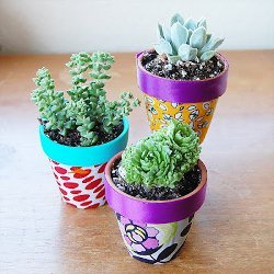 Jazzed Up Flower Pots