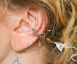 Bellisimo Bow Ear Cuffs