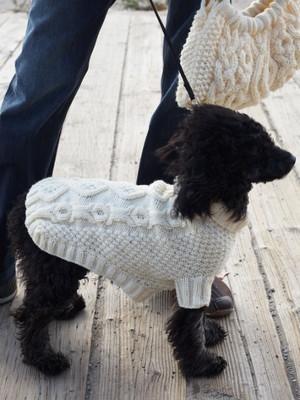 No Bones About It Dog Coat Allfreeknitting Com