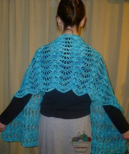 Stop and Stare Crochet Shawl | AllFreeCrochet com