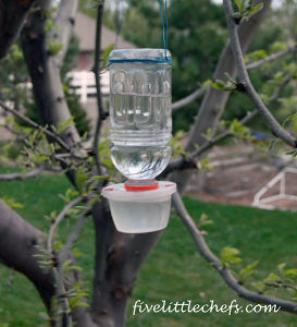 how to make hummingbird feeder water