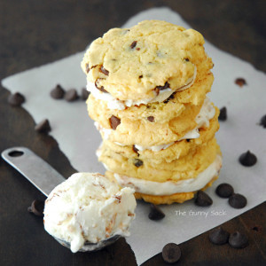 Chocolate Chip Fro-Yo Sandwiches | FaveHealthyRecipes.com
