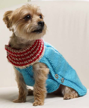 Winter Woof Dog Sweater Allfreeknitting Com
