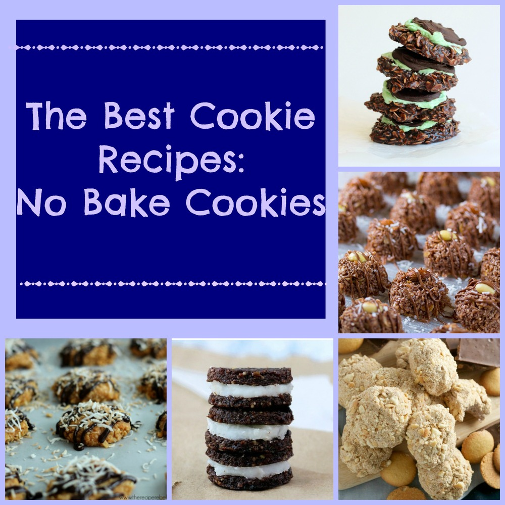 The Best Cookie Recipes 14 No Bake Cookies
