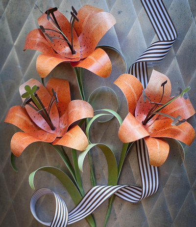 Dazzling Orange Tiger Lily