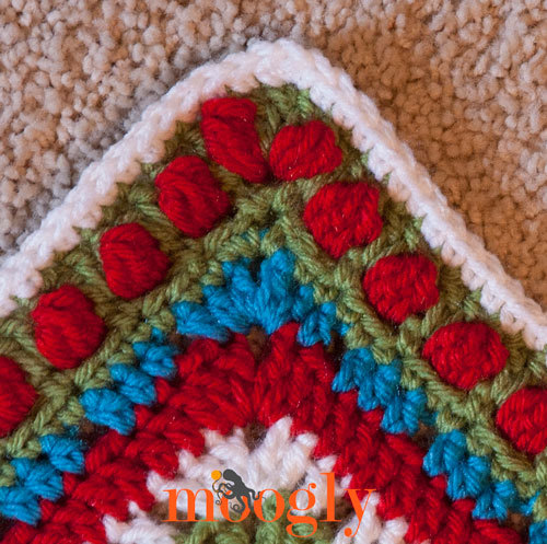How to Crochet a Rose Border ...