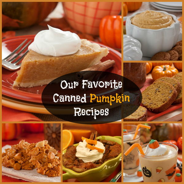 Canned Pumpkin Recipes Have you ever wondered what else you could make with that can of pumpkin besides pumpkin pie? Then you're in luck because we've got plenty of easy recipes ...