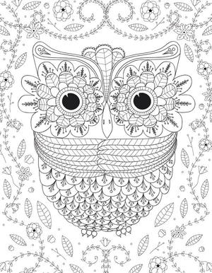 Big Eyed Owl Adult Coloring Page