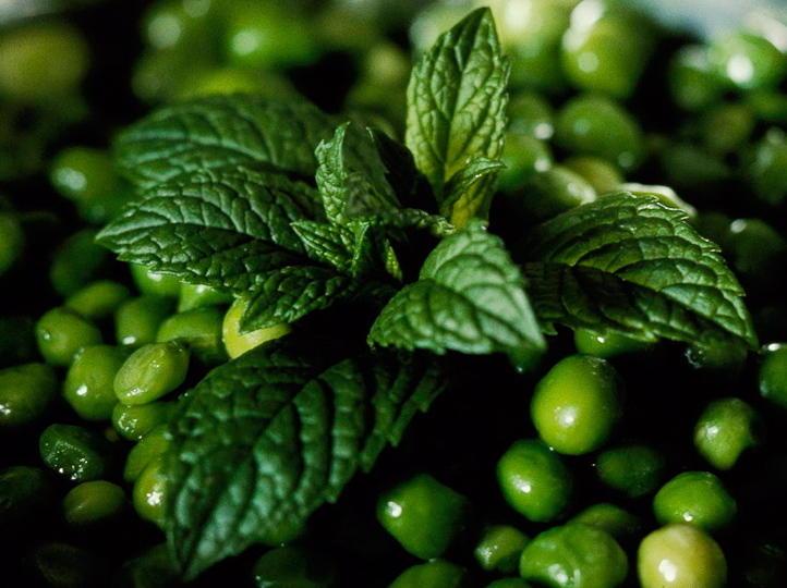 Puree of Pea Soup with Mint | Cookstr.com