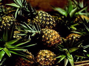 Roasted Pineapple Caribe
