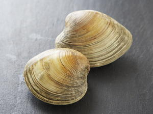 Clams Oreganata