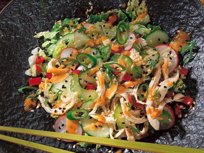 Chicken and Vegetable Salad with Chinese Sesame Sauce
