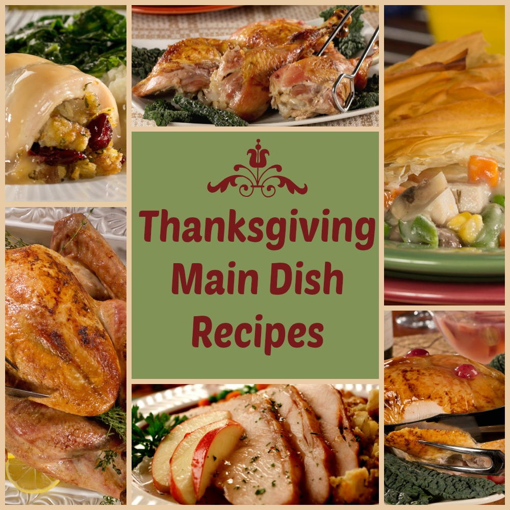Vegan Thanksgiving Series: Main Dish Proteins. 15 Ideas ... |Thanksgiving Main Dishes