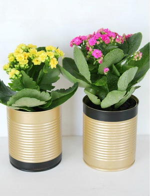Fancy Tin Can Flower Pots
