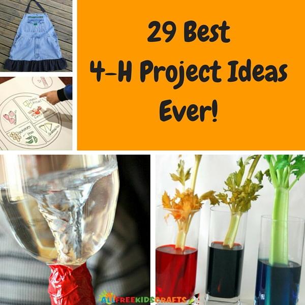 29 Best 4 H Project Ideas Ever AllFreeKidsCraftscom