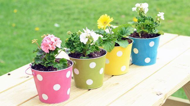 Polka Dot DIY Planters FaveCrafts