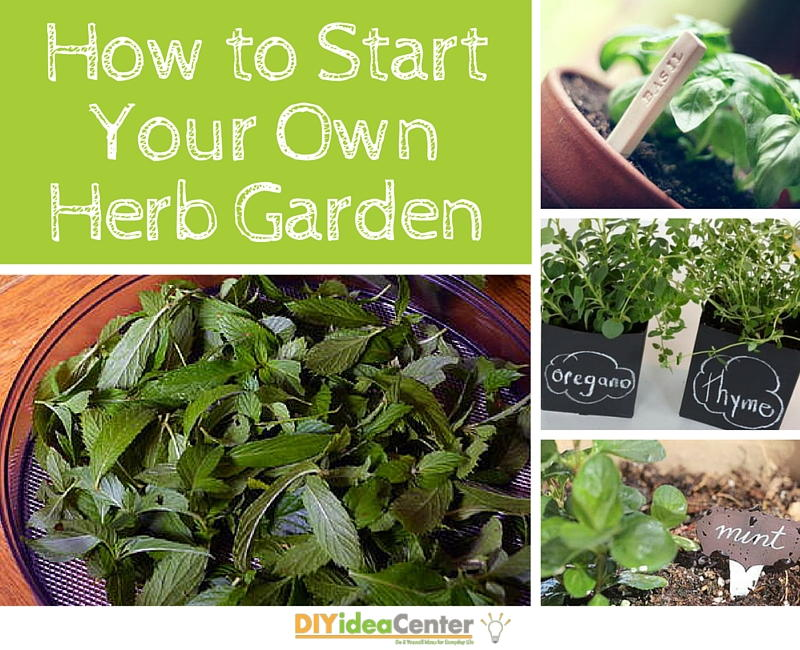 How to Start Your Own Herb Garden DIYIdeaCentercom