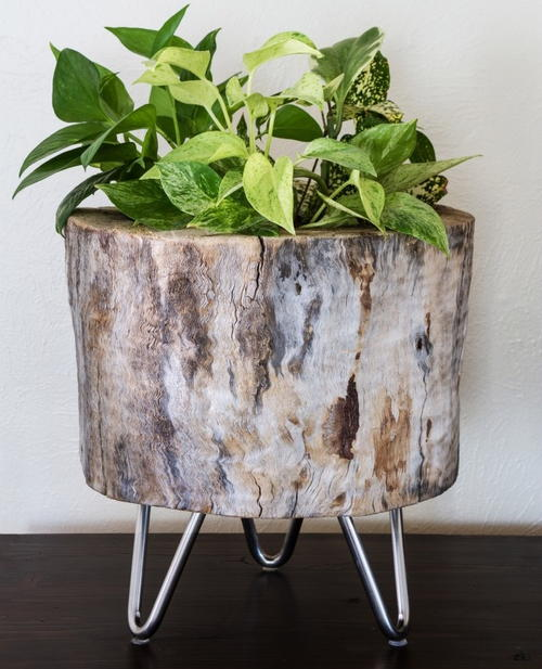 Tree Stump Idea DIY Planter