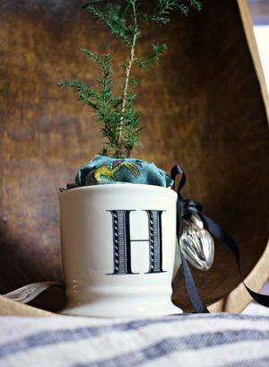 http://irepo.primecp.com/2016/07/289520/DIY-Mini-Christmas-Tree_Medium_ID-1755755.jpg?v=1755755