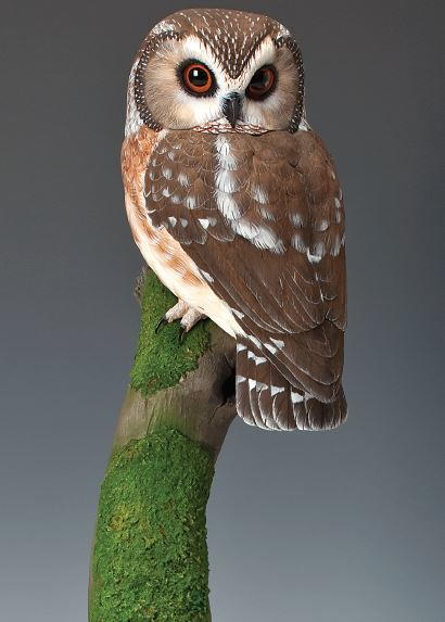 Saw whet owl part two wildfowl carving.com