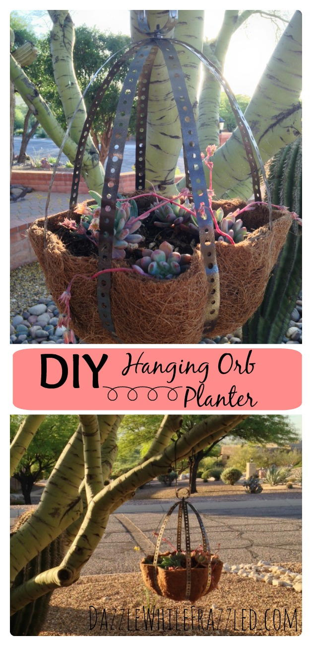 Bdg Style Idaho Project Kitchen: Hanging Orb Planter