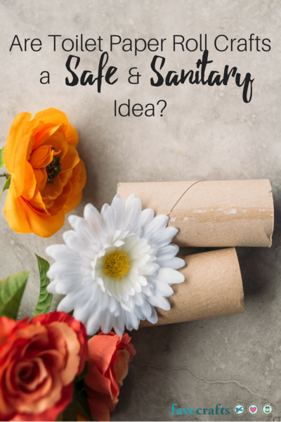 Are Toilet Paper Roll Crafts a Safe and Sanitary Idea