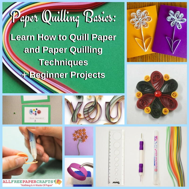 Paper Quilling Book Cover : Paper quilling basics learn how to quill and