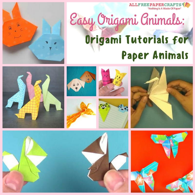 Origami Squirrel - Easy Origami Tutorial - How to make an origami ... | 800x800
