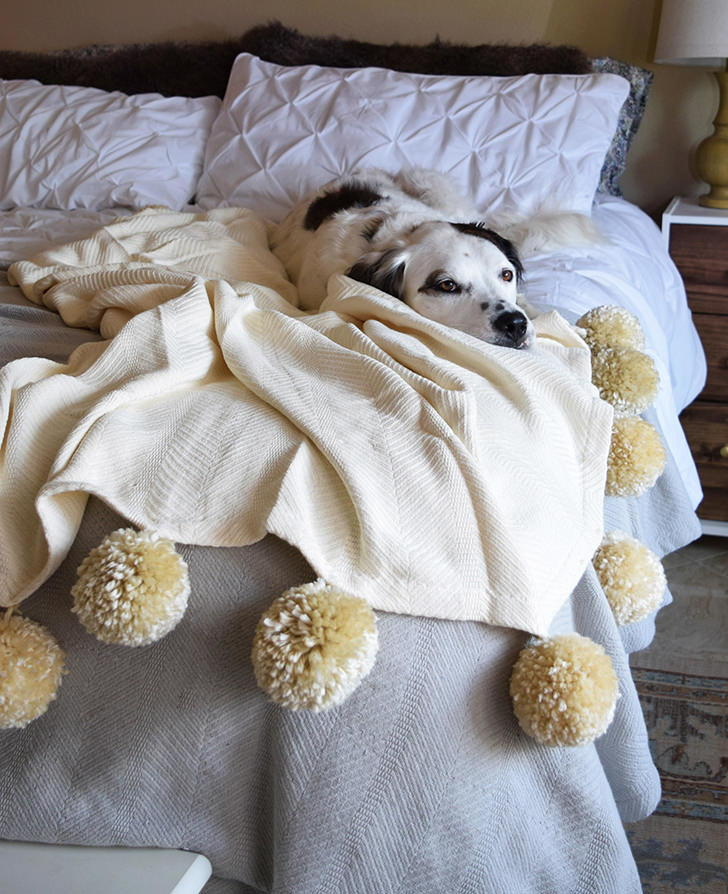 Fuzzy Diy Pom Pom Blanket Favecrafts Com