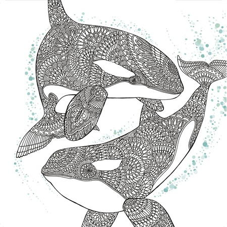 Orca whale coloring page for Orca whale coloring pages