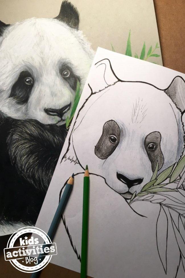 Panda Coloring Page Favecrafts Com