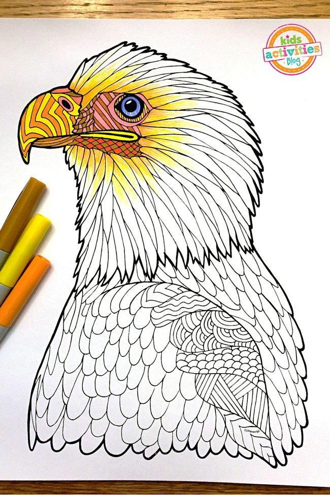 Bald Eagle Zentangle Coloring Page