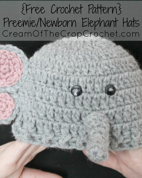 Free Crochet Pattern For Elephant Hat : Preemie/Newborn Elephant Hat AllFreeCrochet.com