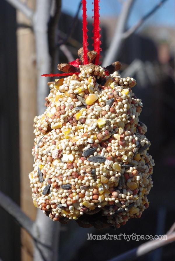 Earth Day Recycled Bird Feeder
