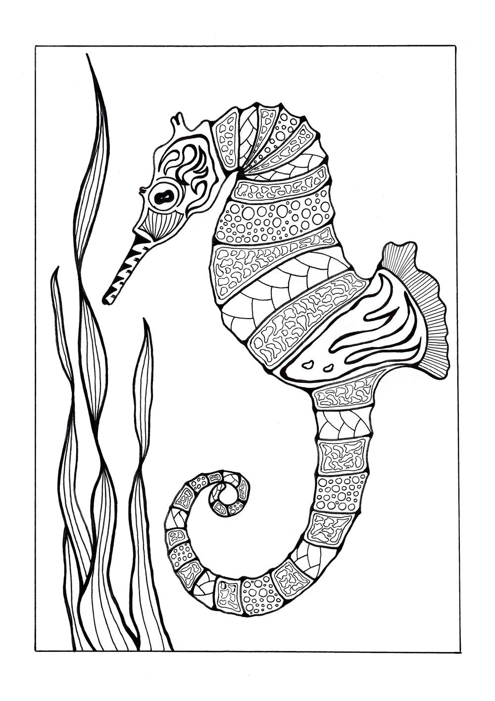 Colorful Seahorse Adult Coloring Page | FaveCrafts.com