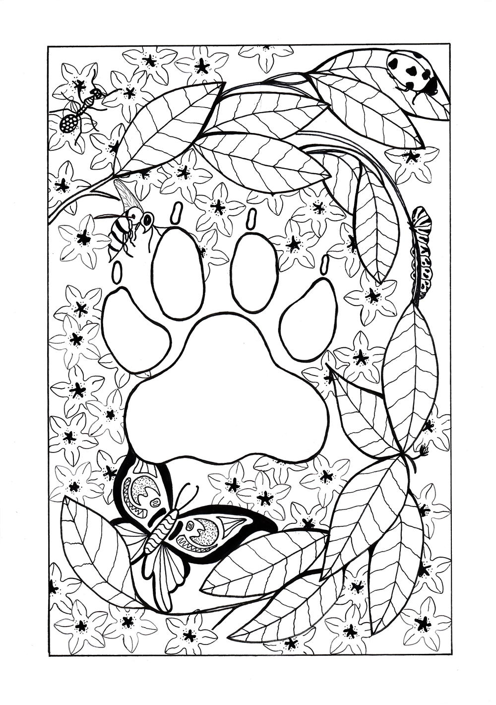 In the Jungle Adult Coloring Page   FaveCrafts.com