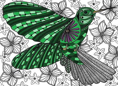 Hummingbird Adult Coloring Page