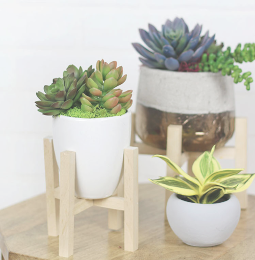 DIY Mini Plant Stands