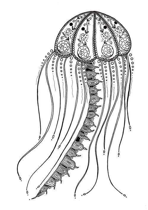 Delicate Jellyfish Adult Coloring Page