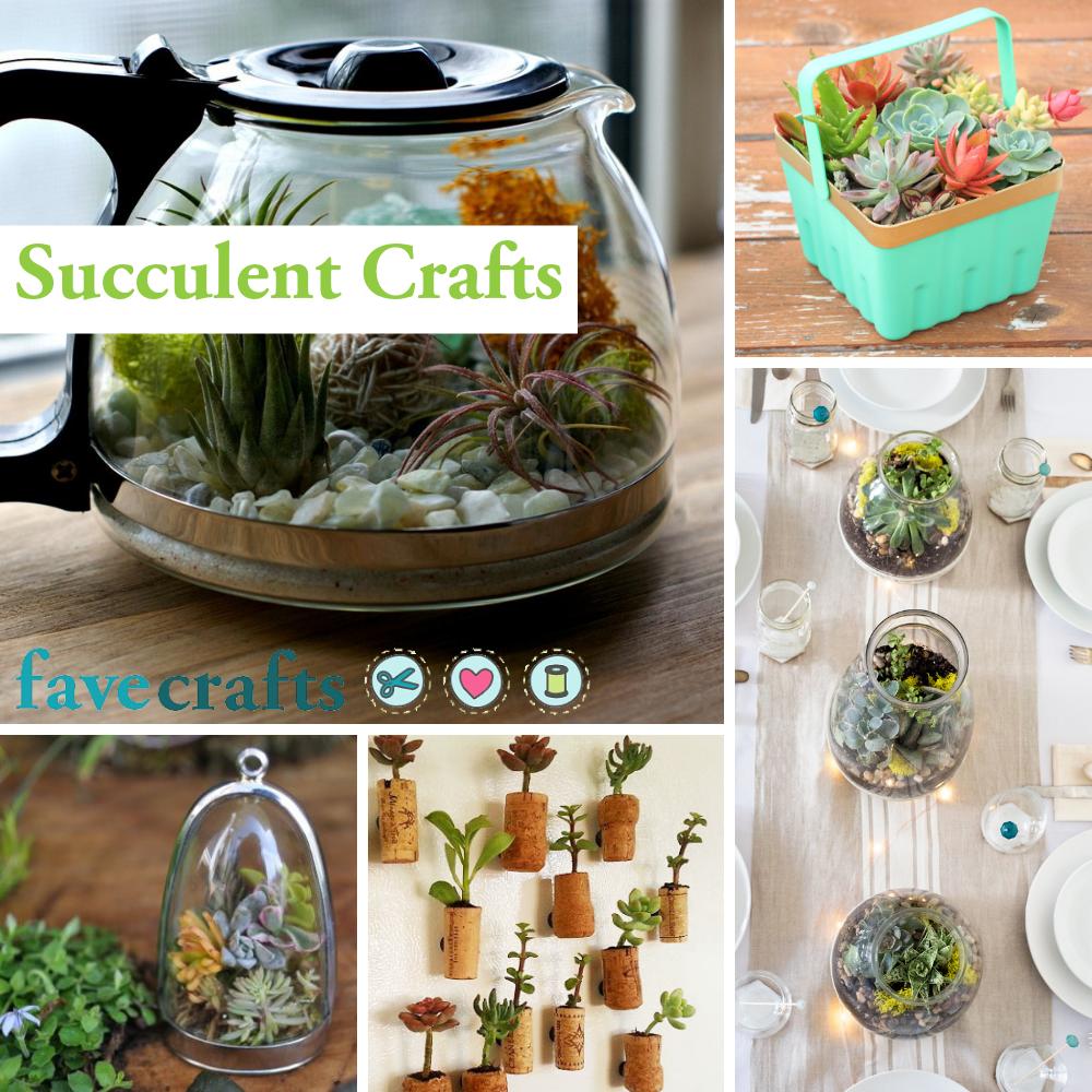 33 Succulent Crafts Pretty Planters Terrariums And More Favecrafts Com
