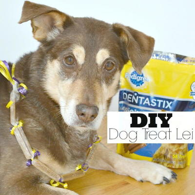 DIY Dog Treat Lei