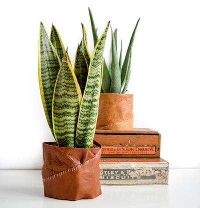 Leather Plant Pot Holder