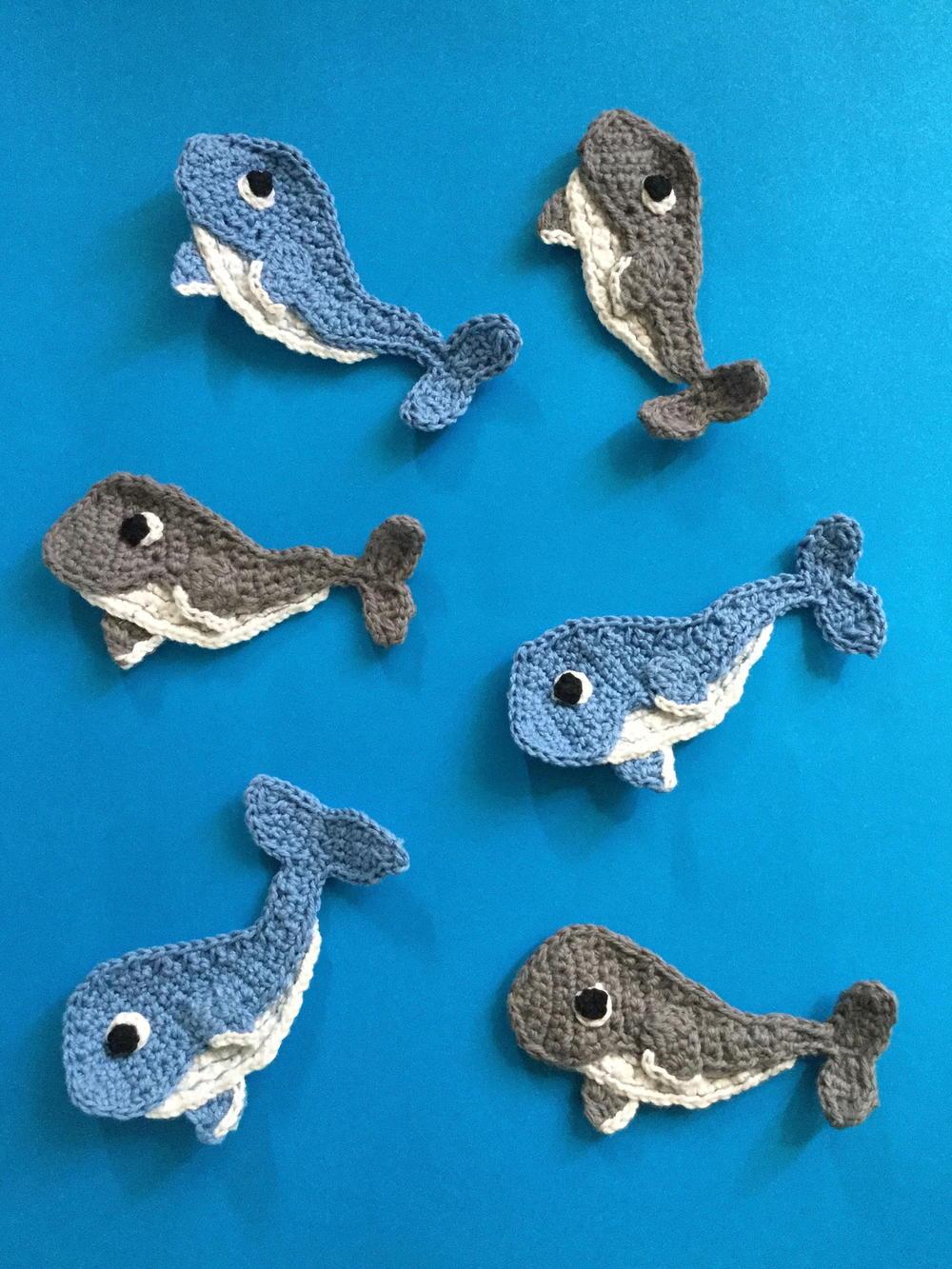 Baby Humpback Whale Free Crochet Pattern | 1333x1000