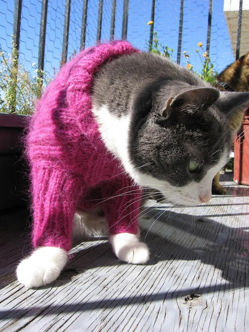 Custom Kitty Turtleneck Tutorial
